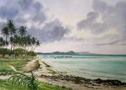 tableau paysages martinique le vauclin coucher de soleil plage : La  plage de la Pointe Faula