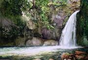 tableau paysages guadeloupe foret tropicale basseterre cascade : Cascade en Guadeloupe