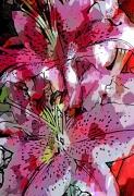 tableau fleurs photo peinture nature fleur de lys : FLEUR DE LYS 1