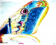 tableau animaux papillon : aile de papillon