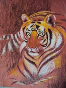 tableau animaux tigre fauve felin chat : Force tranquille