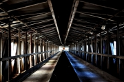 photo architecture montreal industriel heritage architecture : Convoyeur