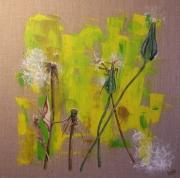 tableau fleurs pissenlit legerete vent champs : Pissenlits