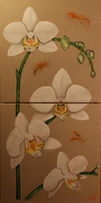 Diptyque Orchidées