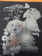 autres animaux mes petit chien gris : mes chiens