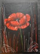 tableau fleurs coquelicot rouge moderne comtemporain : nuit coquelicot