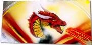 tableau sport dragon catalan peinture sur toile dracs catalans rugby ,a xiii : Tableau Dragon Catalan