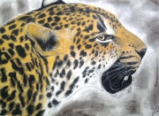 tableau animaux dessin panthere dessin animaux animaux au pastel dessin animalier : Panthere