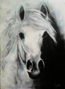 tableau animaux dessin chevaux dessin andalous dessin animalier cheval au pastel : Andalous