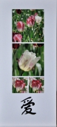 mixte fleurs tulipes photo amour encre de chine : Carte tulipes amour