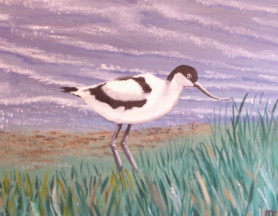 TABLEAU PEINTURE oiseaux avocette artiste mouillard Animaux Peinture a l'huile  - avocette