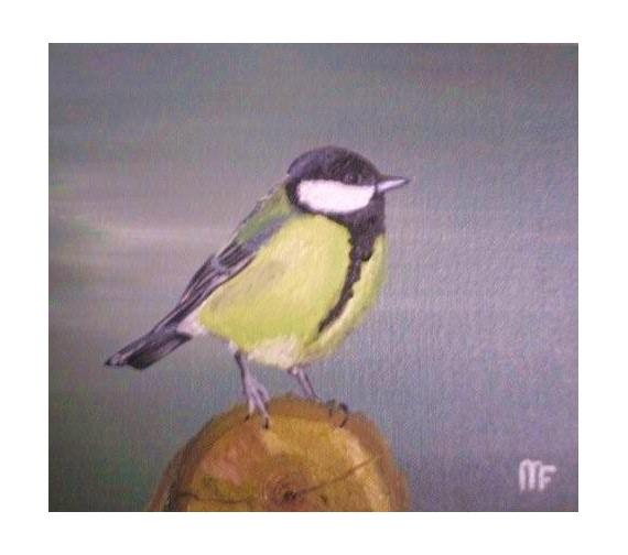 TABLEAU PEINTURE mésange charbonniere oiseaux artiste Animaux Peinture a l'huile  - mésange charbonniere