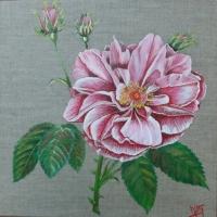Rose d'automne
