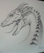 dessin animaux : dragon