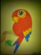 dessin animaux : perroquet