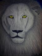 dessin animaux : lion
