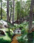 tableau paysages : FORET DE MAZAN