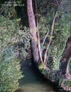 tableau paysages : RUISSEAU DU THEATRE ANTIQUE