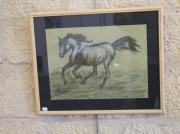 tableau animaux cheval galop verre protecteur : Cheval au galop