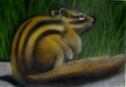 tableau animaux ecureuil aerographie acrylique aerographe : Ecureuil d'Amérique