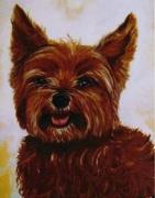 tableau animaux animaux yorkshire feu couleur : Yorkshire de couleur feu
