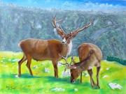 tableau animaux : les cerfs