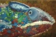 tableau animaux cameleon tete chameleon head : Caméléon