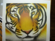 dessin animaux aurel aerographe tiger tigre aerograf : Tigre