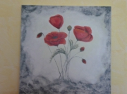 tableau fleurs coquelicots : les coquelicots