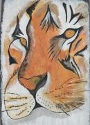 mixte animaux afrique sauvage : Tête de tigre