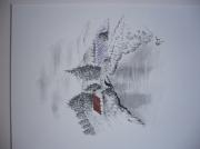 dessin paysages les lavandes : lavande