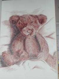 petit ourson
