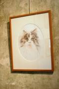 dessin animaux vivant attrayant realiste decoratif : portrait