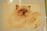 dessin animaux vivant attirant tres decoratif : portrait