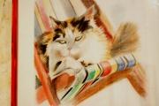 dessin animaux : portrait