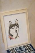 dessin animaux attrayant vivant : portrait
