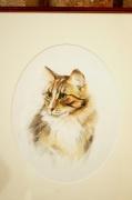 dessin animaux leger vivant : portrait