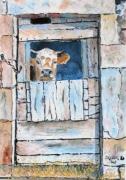 tableau animaux : La vache prisonnière