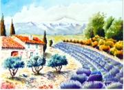 tableau paysages : Lavande au Mont Ventoux