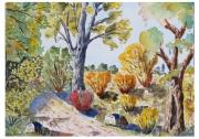 tableau paysages nature paysage bois provence : Sous bois 07 TZ 01
