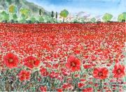 tableau paysages campagne fleurs nature : Le champ de coquelicots N° 09 TZ 01