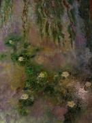 tableau fleurs nenuphar : Nénuphar sur plan d'eau 56x73