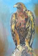 tableau : aigle royal