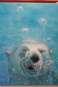 tableau animaux : voyage en arctique