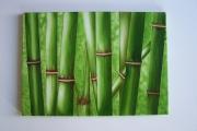 tableau autres : Tableau réalisé à l'aérographe (Vue sur les bambous)