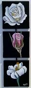 tableau fleurs rose lys : Collection