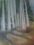 tableau paysages arbre bois foret : wood's