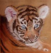 tableau animaux animaux tigre : Petit tigre