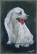 tableau animaux animaux chien blanc : Chien blanc