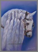 tableau animaux cheval concours : Jument coiffée